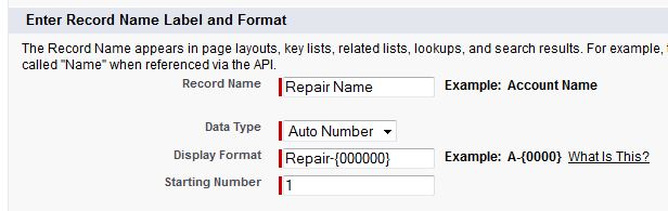 Custom Object Record Name